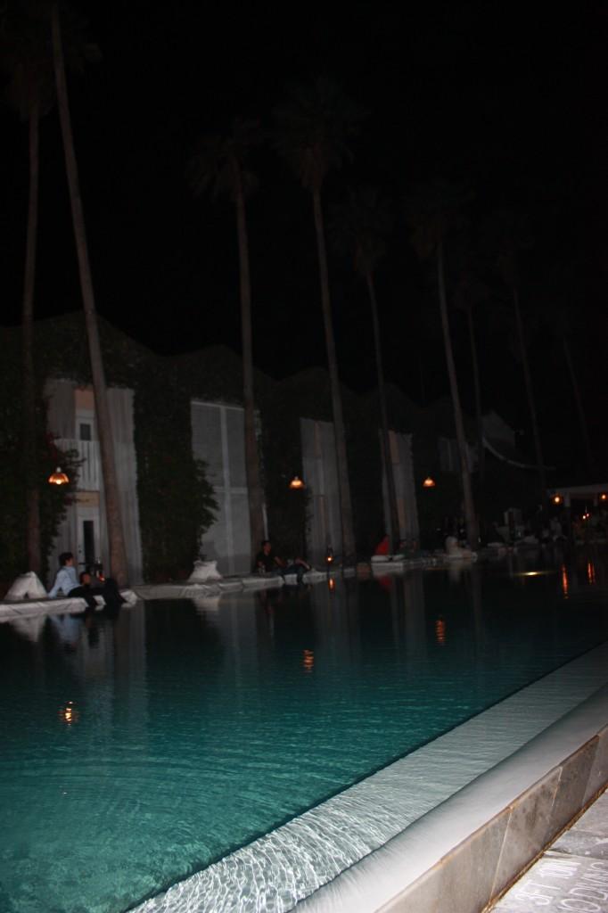the delano pool 682x1024 The Delano Hotel
